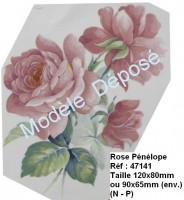 Rose pénélope