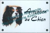Plaque émaillée (10x15cm) Cavalier king charles 3 couleurs