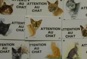 2. Attention au chat +décor 10x15cm