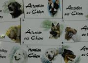 2.1 Attention aux chiens 10x15cm + décor