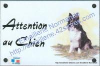 Plaque émaillée (10x15cm) Border colley assis
