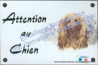 Plaque émaillée (10x15cm) Lévrier afghan