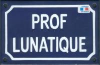 Plaque émaillée humoristique (10x15cm) Prof lunatique