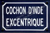 Plaque émaillée (10x15cm) cochon d'inde excentrique