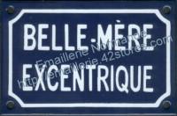 Plaque émaillée humoristique (10x15cm) Belle-mère excentrique