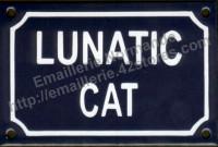 Plaque émaillée (10x15cm) Lunatic cat